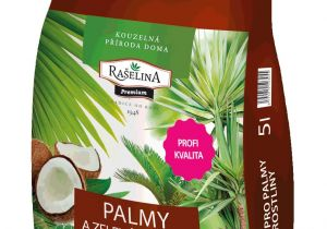 Homemade Fertilizer for Palm Trees Palm Tree and Green Plant Substrate Raa Elina A S