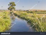 Horizon Irrigation Near Me Irrigation Ditch Colorado Farmland Near fort Stock Photo Edit now