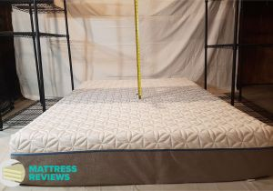 How Much Does A Tempur Pedic King Mattress Weigh Casper Vs Tempurpedic Vs Novosbed Mattress Review Mattress Reviews