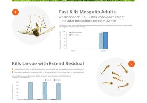 How to Get Rid Of Mosquito Larvae In Standing Water Amazon Com Ecoraider Mosquito Killer Hose End Spray 32 Oz 3 In 1