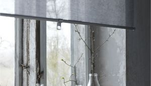 Ikea Wooden Blinds Discontinued Skogskla Ver Rolgordijn Grijs for Home Pinterest Ramen Window