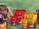 Is there A Dating Site for Animal Lovers Purpose Pet Food that Reflects the Values Of Animal Lovers by