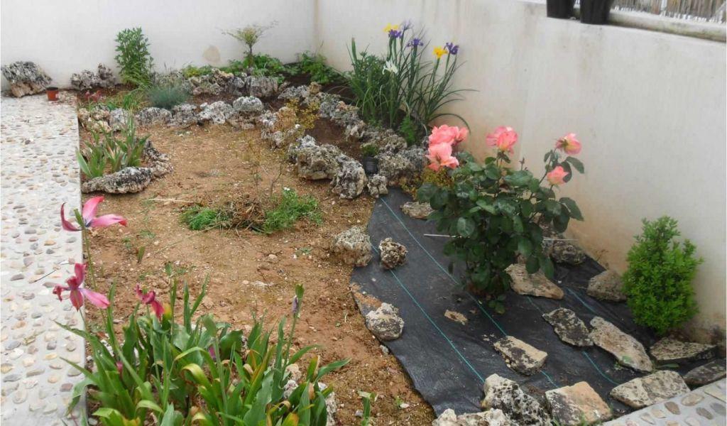 Jardines Pequeños Para Frentes De Casas Diseo Jardines Pequeos