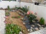 Jardines Pequeños Para Frentes De Casas Diseo Jardines Pequeos Fabulous Variante Con Xeriscape with Diseo