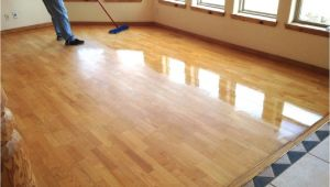 Laminate Flooring with Pets Laminate Flooring Pets Urine