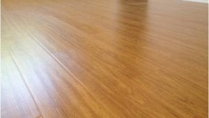 Laminate Wood Flooring with Dogs Laminate Wood Flooring for Dogs the Interior Design