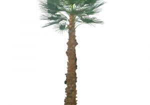 Large Fake Palm Trees for Sale 2 5m Artificial areca Palm Trees with 940 Leaves Artificial Palm