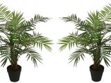 Large Fake Palm Trees for Sale Fake Palm Trees for Sale Indoor Adinaporter