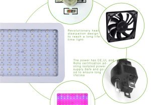 Led Grow Tent Packages Amazon Com Homenote Led Plant Grow Light for Indoor Plants 1000w