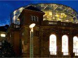Light the Night Phoenix Art Museum Mainz tourismus tourismus Mainz