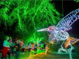 Light the Night Phoenix Art Museum What to Do On Christmas Day 2018 In Phoenix