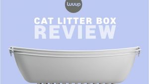 Luuup Litter Box Reviews Luuup Review the Ingenous Cat Litter Box that Makes Life