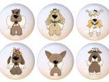 Maison Bleue Drawer Knobs Best Dog Drawer Pulls Online