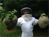 Midwest Pest Control Rockford Il Midwest Pest Control Rockford Il 61107 815 558 1073