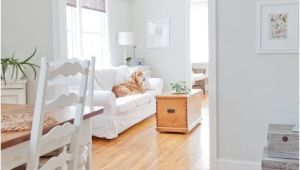 Misty Grey Benjamin Moore Find It the Perfect Grey Paint that Will Outlast the