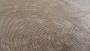 Mohawk Smartstrand Silk Reviews Mohawk Carpet Reviews Smartstrand Carpet Vidalondon