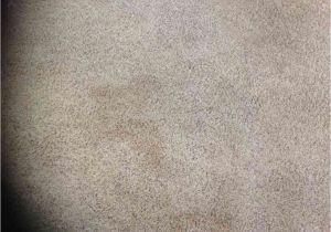 Mohawk Smartstrand Silk Reviews Smartstrand Carpet Complaints Floor Matttroy