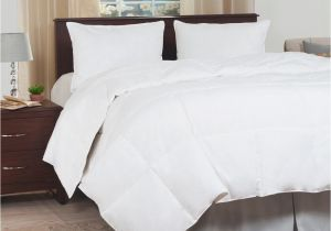 Most Fluffy Down Alternative Comforter Lavish Home Ultra soft White Down Alternative Full Queen