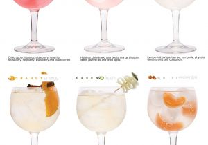 Myers Cocktail Buy Online 6 Gin tonic Infusions Aroma Beuteln Botanicals Geschenk Aromen Zum