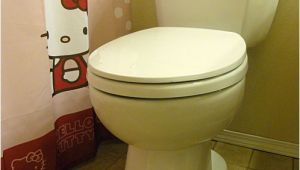 Niagara Stealth toilet Review Niagara N7717 Stealth toilet Review with Pictures and