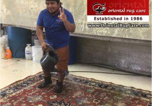 Oriental Rug Cleaning Boca Raton Proper Rug Cleaning In Boca Raton