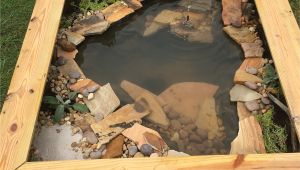 Outdoor Above Ground Turtle Pond Our New Diy Above Ground Pond for Bella the Turtle Projects to