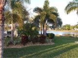 Paradise Lawn and Landscape Cypress Woods Rv Resort Campground Reviews fort Myers Fl