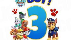 Paw Patrol Birthday Iron On Transfers Paw Patrol Iron On Transfer Birthday Boy Luvibeekidsco