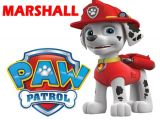 Paw Patrol Iron On Transfer Australia Paw Patrol Marshall T Shirt Iron On Transfer