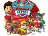 Paw Patrol Iron On Transfers Paw Patrol Iron On Transfer 5 Quot X5 75 Quot for Light Colored