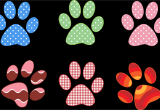 Paw Print Flower Art Colorful Paw Prints by Gdj From Pdp On Openclipart Food and