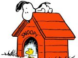 Peanuts Snoopy Dog House Tent 751 Best Images About Charlie Brown On Pinterest
