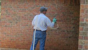 Pest Control Abilene Tx Pest Exterminator Abilene Tx andrew Turnbull
