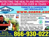 Pest Control toms River Nj Ozane Termite Pest Control toms River Nj 08755