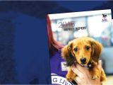 Pet Stores In southeast Texas Animal Rescue League Of Iowa Inc