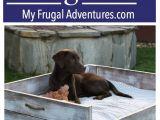 Pet Supplies Beaumont Tx Diy Dog Bed Tutorial Best Of My Frugal Adventures Blog Pinterest