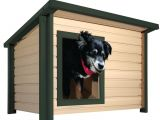 Pet Supplies Beaumont Tx Dog Houses Dog Carriers Houses Kennels the Home Depot