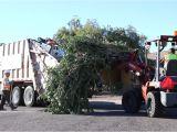Phoenix Bulk Trash Pickup by Address Bulk Trash is Coming to Your Neighborhood