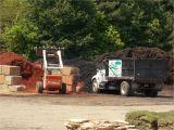 Pine Straw Cumming Ga now Offering Best Priced Mulch In Cumming Ga Glm sod Landscape