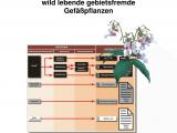 Pioneer Sand and Gravel Price List Pdf Naturschutzfachliche Invasivitatsbewertungen Fur In Deutschland