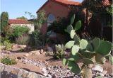 Plant Nursery El Paso Texas Arid El Paso Makes Every Drop Count Grist