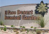 Plant Nursery El Paso Texas El Paso the Sun City 9 Interesting Facts Travel with