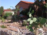 Plant Nursery In El Paso Tx Arid El Paso Makes Every Drop Count Grist