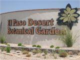 Plant Nursery In El Paso Tx El Paso the Sun City 9 Interesting Facts Travel with