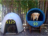 Plastic Barrel Dog House Raising toot and Roxy Dog House Idea for Cheap