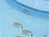 Pool Decals for Concrete Pools Pool Decal Coral Reef Scene for Concrete Fiberglass Pools