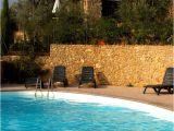 Pool Decals for Concrete Pools Pool Decal Loggerhead Turtle for Concrete Fiberglass Pools