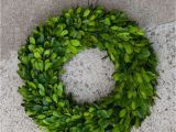 Preserved Boxwood Wreath Bulk Adinaporter