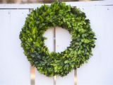 Preserved Boxwood Wreath Bulk Preserved Boxwood Wreath Base Wreath by theblaithinblairshop
