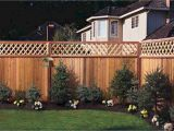 Privacy Fence Ideas On A Budget Affordable Backyard Privacy Fence Design Ideas 53 Cape Cod